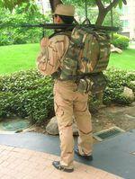 Рюкзак Camel Bag, рюкзак армии США, рюкзак с гидросистемой.